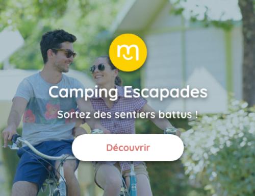 Camping Escapades