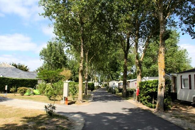 Camping Bois D Amour Quiberon - Camping Flower Le Bois d'Amour  Location Quiberon Maeva com